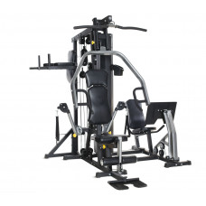 Фитнес станция Horizon Fitness Torus 5
