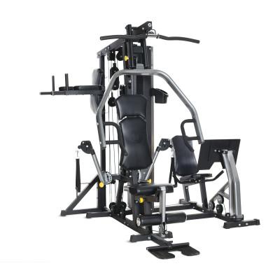 Фитнес станция Horizon Fitness Torus 5