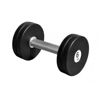 Гантель профессиональная Sportech.D 6 кг ТК 409.6