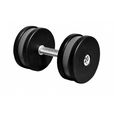 Гантель профессиональная Sportech.D 20 кг ТК 409.20