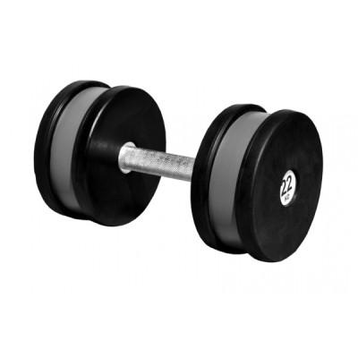 Гантель профессиональная Sportech.D 22 кг ТК 409.22