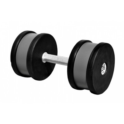 Гантель профессиональная Sportech.D 26 кг ТК 409.26
